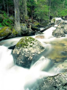 sweathouse-creek